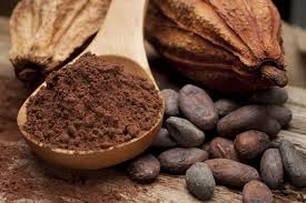 bot-cacao-1